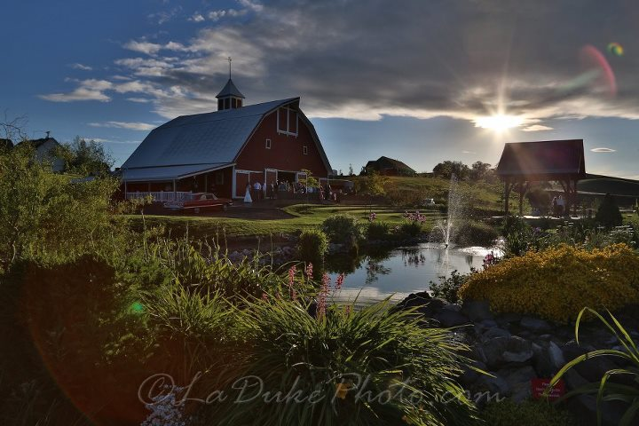 Red-Barn-Farms